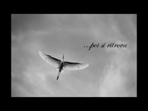 Elisa - L'anima vola (Lyrics)