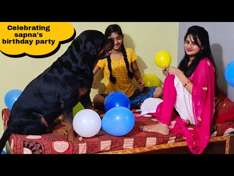 my dog jerry celebrating sapna's birthday party||funny dog videos.