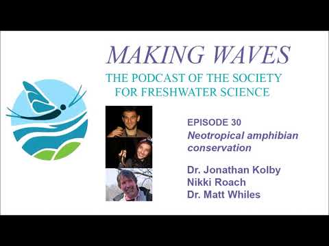 Making Waves - Ep 30: Neotropical Amphibian Conservation