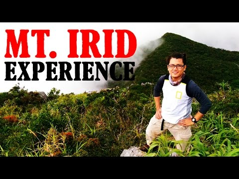 MT. IRID - SIERRA MADRE (Super Fun Day Hike) + TREE PLANTING
