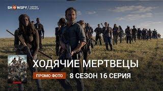 Ходячие Мертвецы 8 сезон 16 серия промо фото