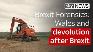 Brexit Forensics: Wales and devolution after Brexit