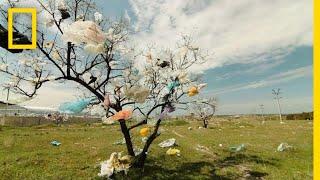 Plastics 101 | National Geographic