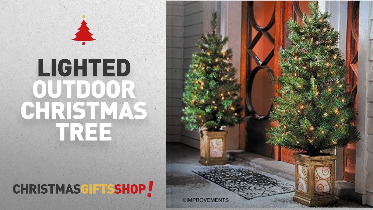 Most Popular Lighted Outdoor Christmas Tree: 4 Ft Pre-Lit