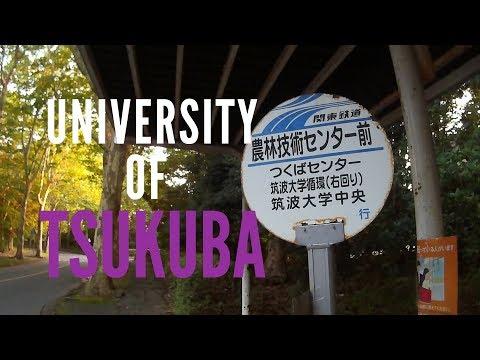 Arriving in Japan: University of Tsukuba| 初めて日本に!筑波大学