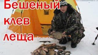 Ловля леща зимой Устье Соложи.