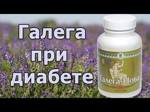 Препарат Галега-Нова на лекарственных травах, понижающий сахар в крови при сахарном диабете (БАД).
