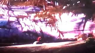 Как приручить дракона (трейлер самодельный) mp4