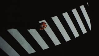 ALEKSEEV - Как ты там (teaser)