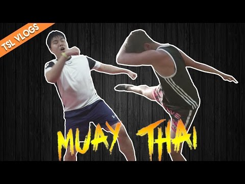 GETTING OUR BUTTS KICKED IN MUAY THAI | TSL Vlogs