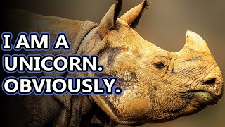 Rhino Facts: The World's Living Unicorn | Animal Fact Files