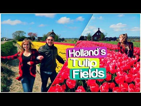 TULIP TOUR THROUGH HOLLAND | Lisse, Netherlands Travel Vlog
