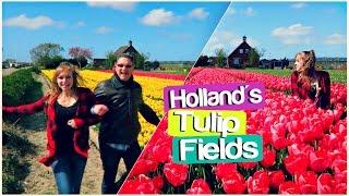 TULIP TOUR THROUGH HOLLAND   Lisse, Netherlands Travel Vlog