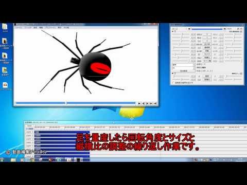 【aviutl】 今話題のセアカゴケグモを作成してみた。 【Latrodectus hasseltii】