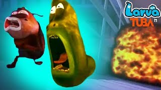 Larva Cartoon Full Movie 2018 | Bug Bomb | Larva Terbaru Season 4