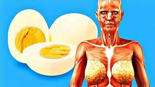 Ecco Cosa Accade se Mangi 2 Uova ogni GIORNO