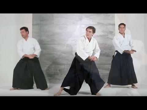 aikido-afamadrid.-video-de-presentación