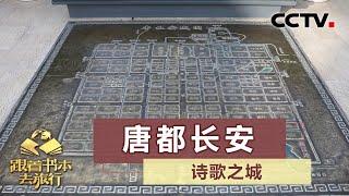 《跟着书本去旅行》 20200625 诗歌之城——唐都长安| CCTV科教