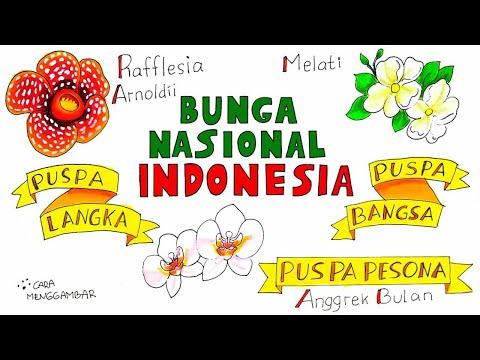Cara Menggambar Membuat Poster Flora Bunga Nasional Indonesia Yang Bagus Dan Mudah Ditiru Ep 226 Youtube