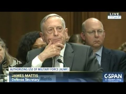 Defense Sec Mattis & Secretary Of State Tillerson Testify On