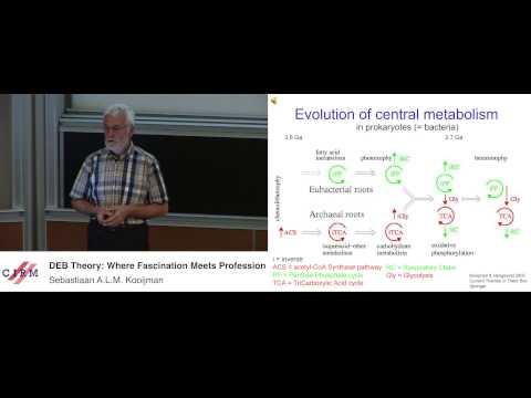 Sebastiaan A.L.M. Kooijman:  DEB theory: where fascination meets profession
