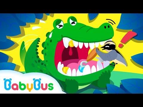 ❤ Wild Animals 5# Crocodile & The Bird  | Animals Sounds & Songs | Baby Panda Songs | BabyBus