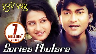 SORISA PHULARA HALADIA KHETA Romantic Song by Namita Agrawal Sidharth TV