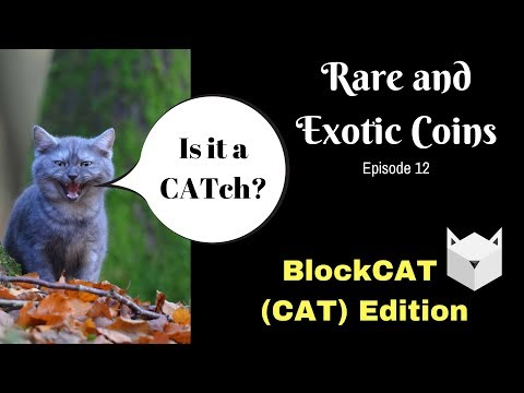 Rare and Exotic Coins Ep 12 | BlockCAT (CAT) ERC20 |Should Smart Contract Creation Be Made Easy?
