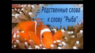 Родственные слова к слову Рыба