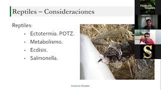 Rescate y Rehabilitación de Fauna Silvestre - Jornada 4