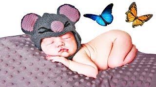 As Borboletas Cantam Canções de Ninar - 1 Hora - Bebês - Musica