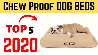 Top 5  Best Durable Chew Proof Dog Beds 2020 | Chew Proof Bed For Dogs.
