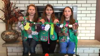 Girl Scouts 101 - SWAPS