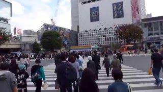 Tokyo, Japan - Shibuya Crossing HD (2015)