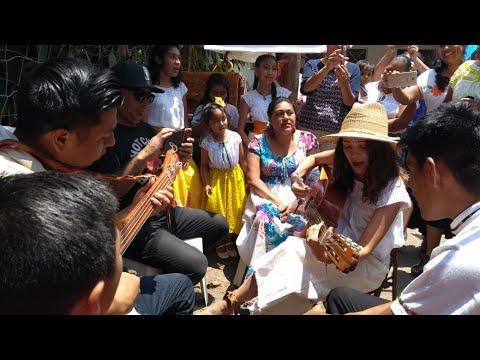 Natalia Lafourcade coloca primera piedra de nuevo centro del son jarocho