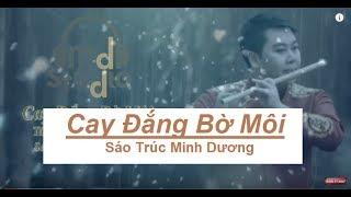 Cay Đăng Bờ Môi | Sáo Trúc Minh Dương | Nhạc Bolero Không Lời