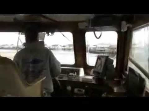 Queen mary fishing charters point pleasant beach new for Queen mary fishing report