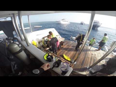 Diving the Red Sea Aggressor 2016, POV