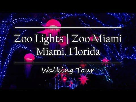 Zoo Lights At Zoo Miami | Miami, Florida