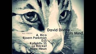 David Divine - Cats Mind (Kollektiv SS Remix)