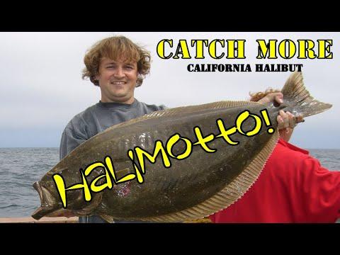 Catch More Halibut Radio Interview & Seminar