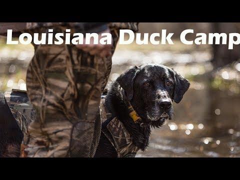Louisiana Waterfowl Cajun Duck Camp