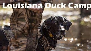 Louisiana Waterfowl Cajun Dขck Camp