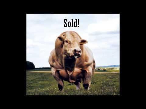 Auctioneer Metal