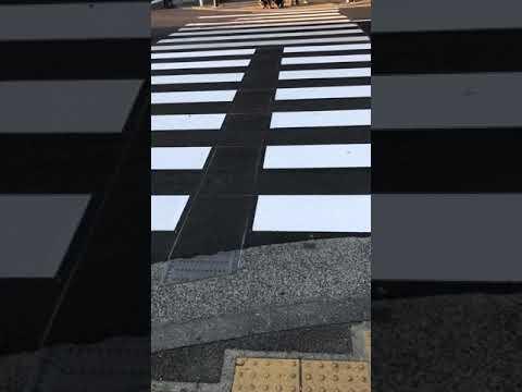 ゾーン エスコート 視覚障碍者歩行支援システム トアエスコート