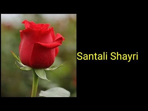 Santali shayri part 6