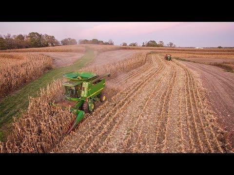 Sinkholes - Harvesting Corn