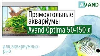 Прямоугольный аквариум Avand Optima 50 — 150 литров.