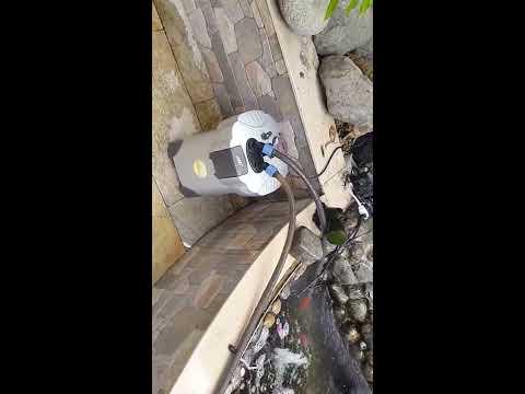 Cascada pecera esquinera de piedra natural con plantas for Cascadas con piedras naturales