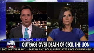 Outrage Over Death of Cecil the Lion - Dana Loesch